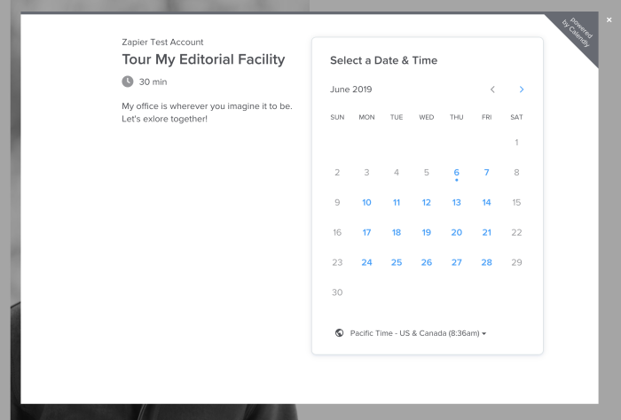 Calendly popup in WordPress
