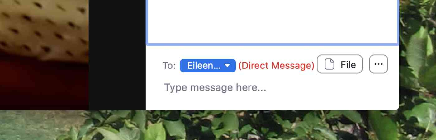 Sending a direct message in Zoom chat
