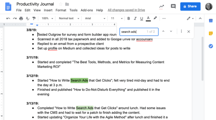 Google Docs productivity journal