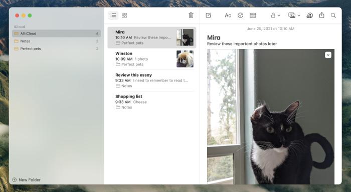 Apple Notes on Mac screenshot