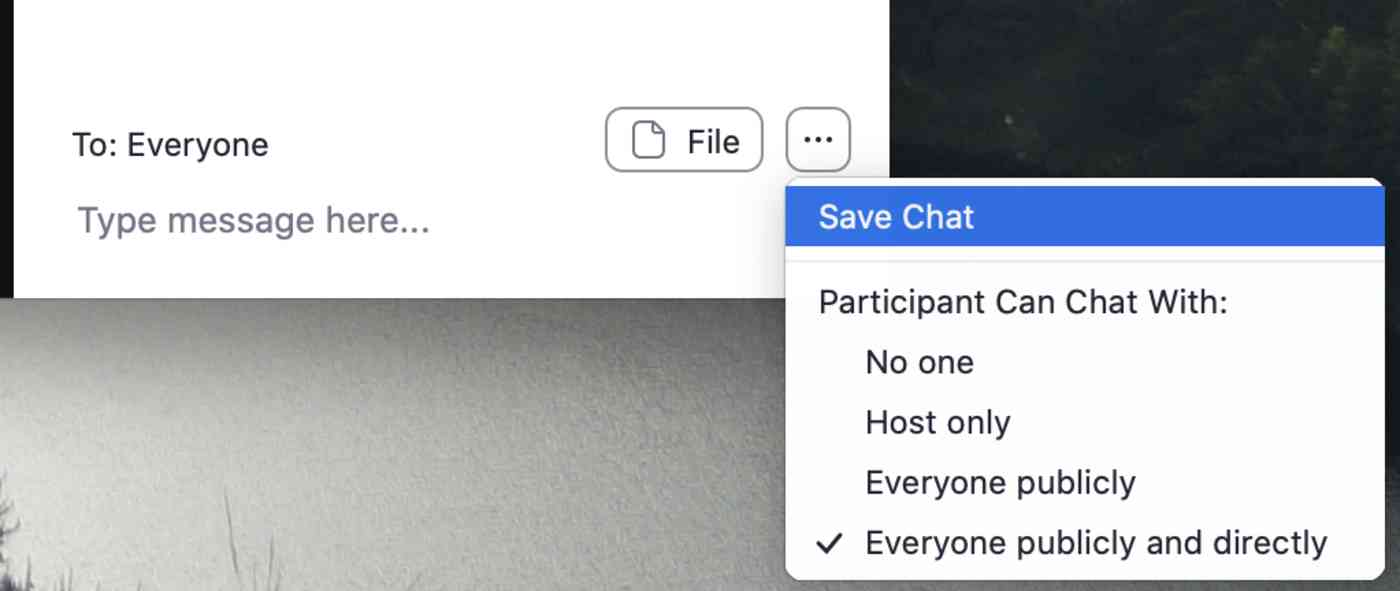 Saving the Zoom chat