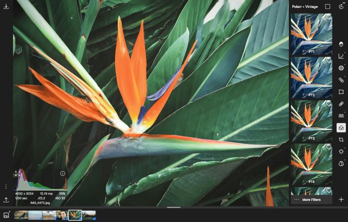 Polarr photo editor screenshot