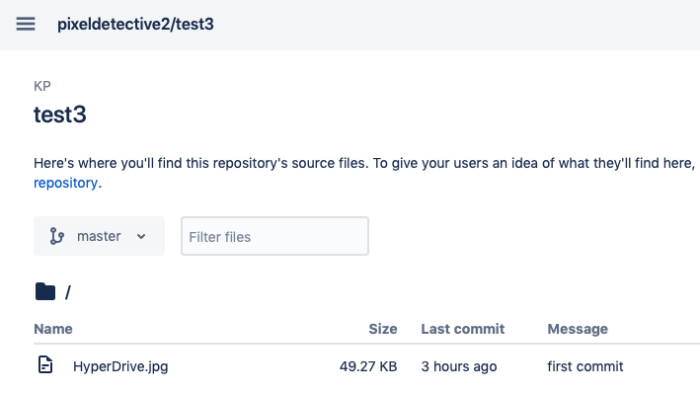 View repository in Bitbucket