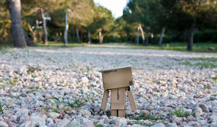 Danbo outside