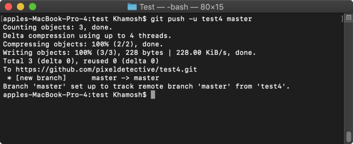 Push local contents to remote repository
