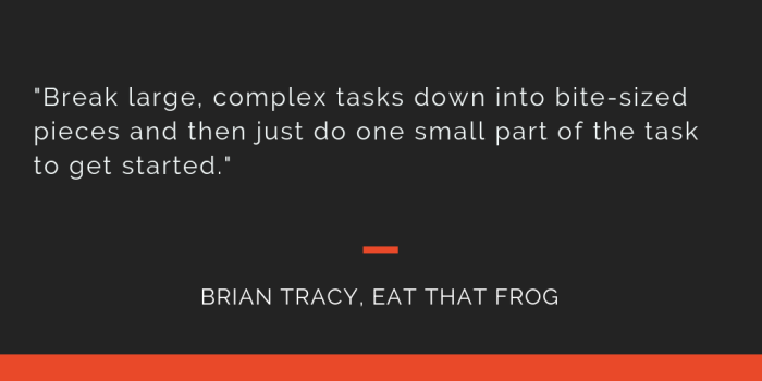 Eat That Frog principle 18: Break large, complex tasks down into bite-sized pieces and then just do one small part of the task to get started.