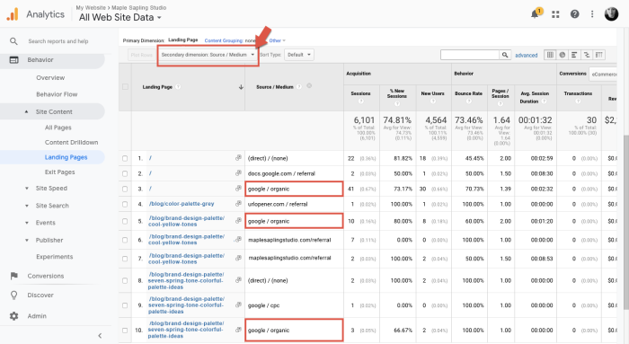 Screenshot showing how to monitor SEO growth with most popular landing pages