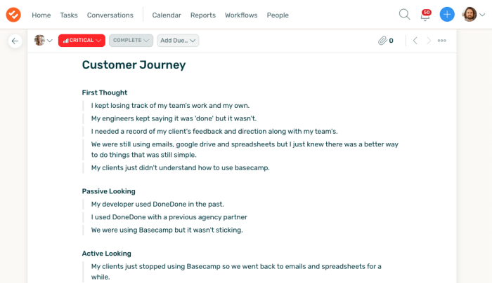 Documentation of customer interviews in DoneDone