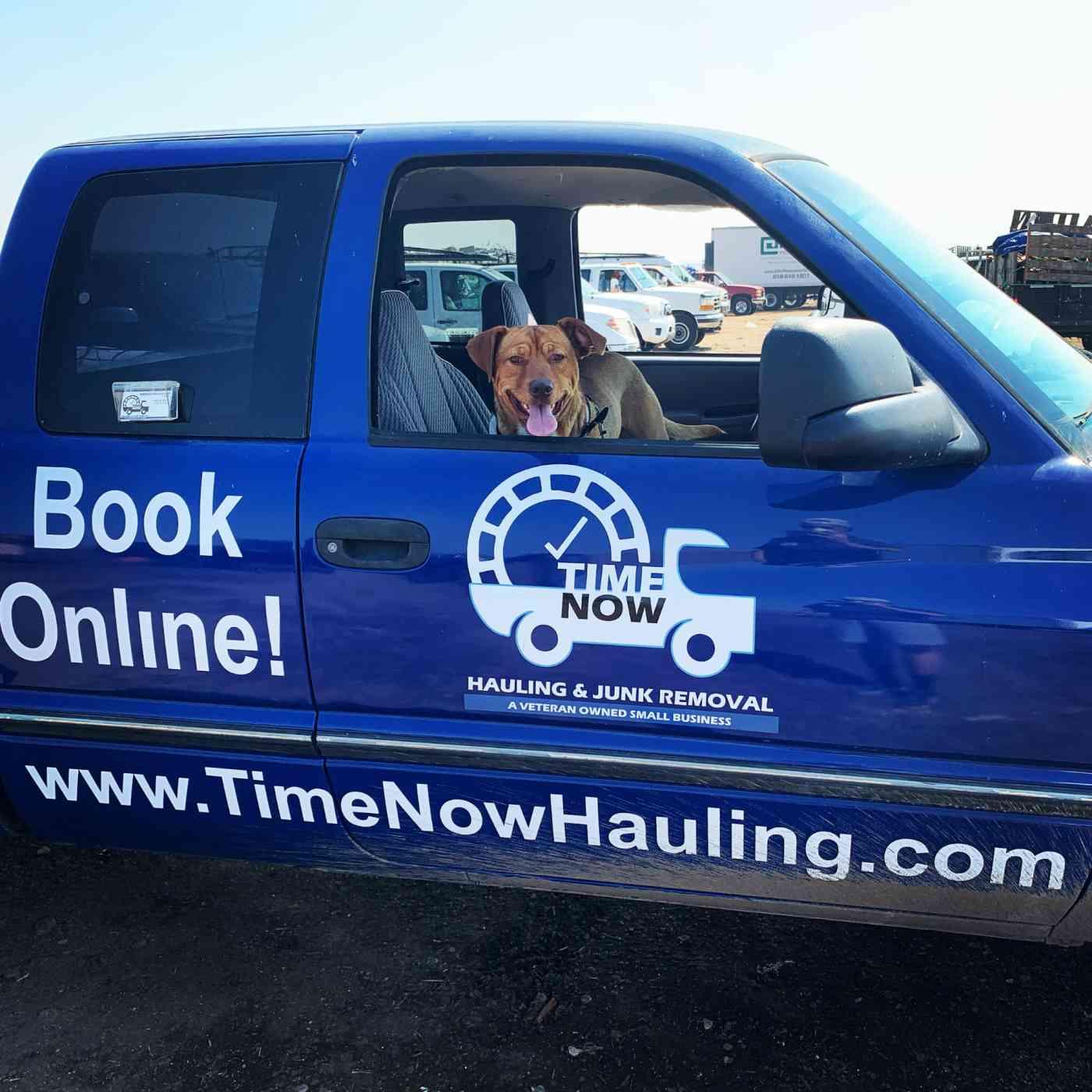 A dog in a hauling truck