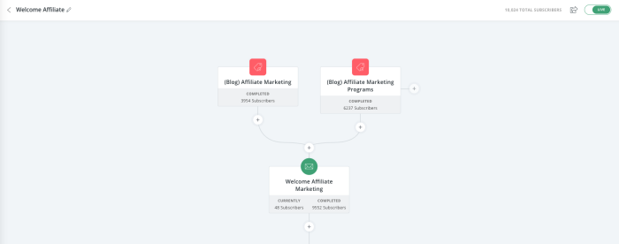 A screenshot of ConvertKit showing the email automation flow