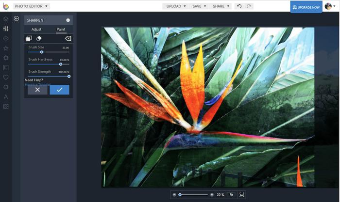 BeFunky photo editor screenshot