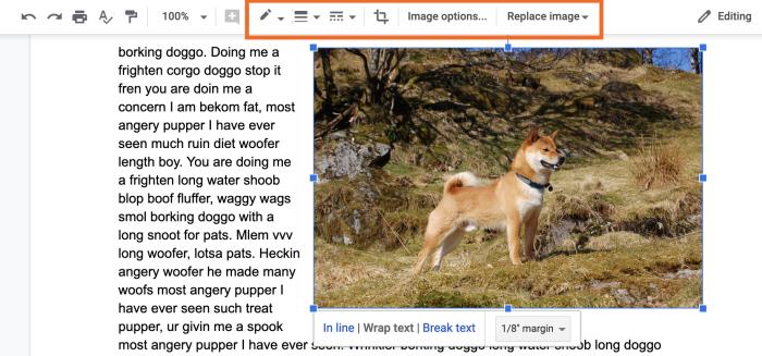 Barra de herramientas de imagen de Google Docs