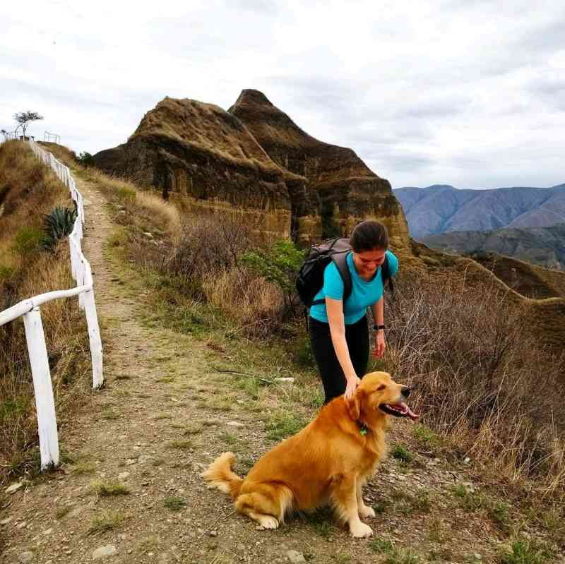 A woman petting a Golden Retriever dog on a mountain trail.