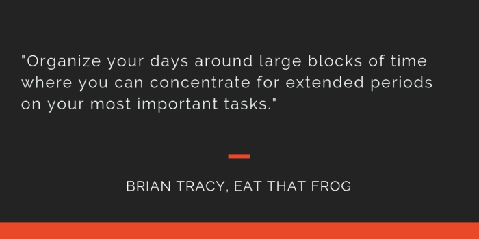 Eat That Frog principle 19: Organize your days around large blocks of time where you can concentrate for extended periods on your most important tasks.