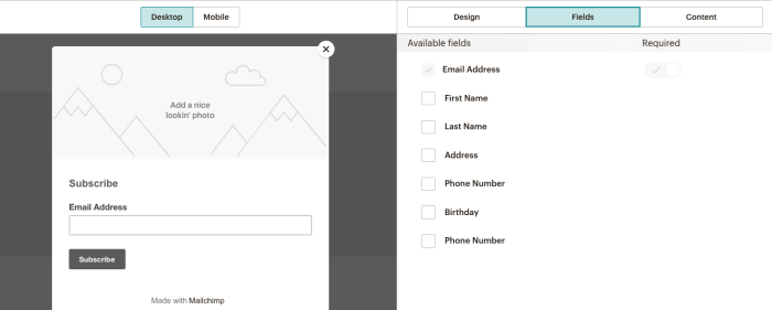 Building a form in Mailchimp.