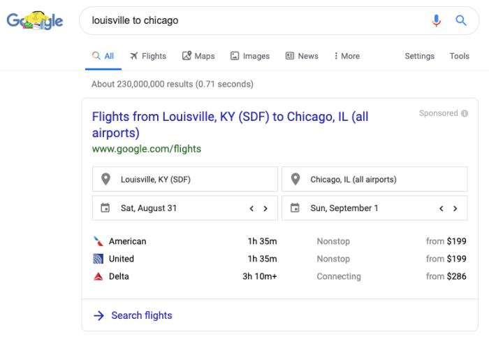 Google flight information