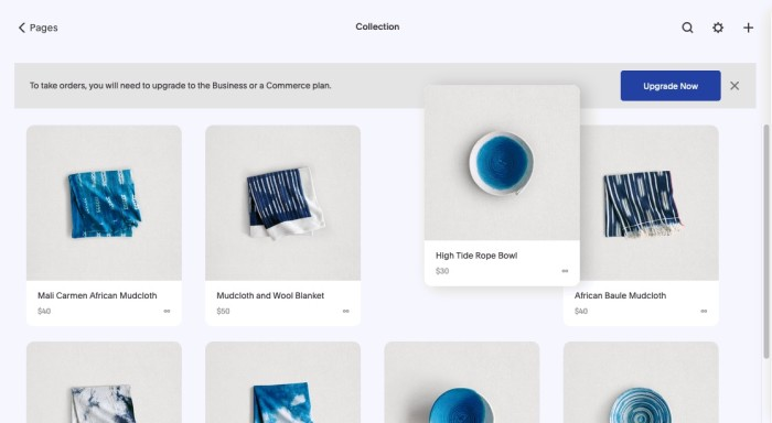 Squarespace user interface