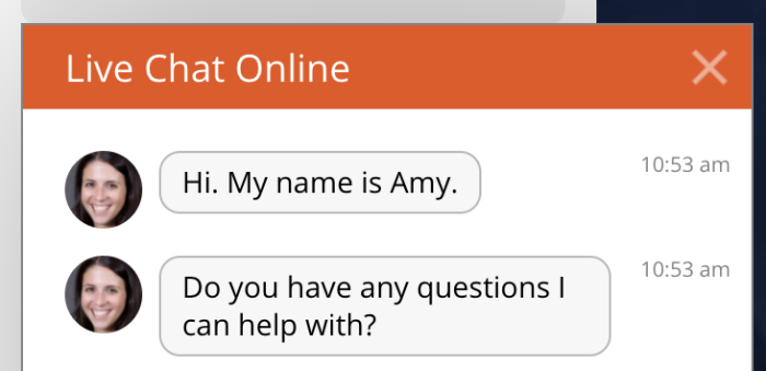 An example of a chatbot