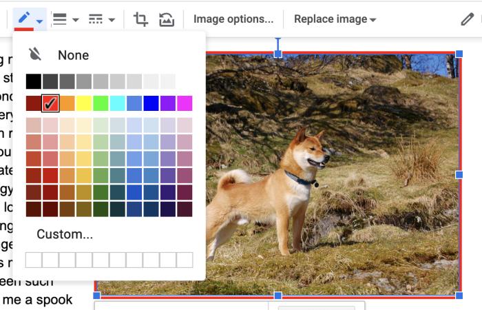 Borde de la imagen de Google Docs