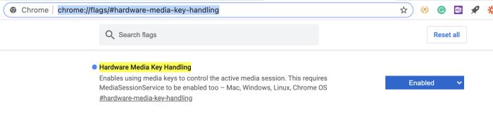 Disabling hardware media key handling