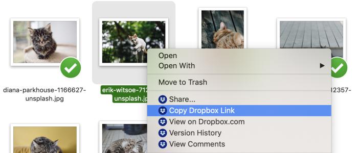 Dropbox copy link