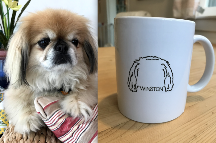 """At left, a photograph of a dog named Winston. At right, a mug with an outline of Winston's head and the text """"Winston""""."""