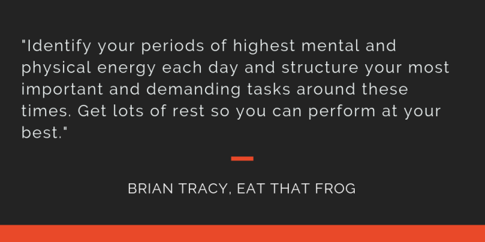 Eat That Frog principle 15: Identify your periods of highest mental and physical energy each day and structure your most important and demanding tasks around these times. Get lots of rest so you can perform at your best.