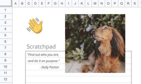 A picture of a dog in the spreadsheet