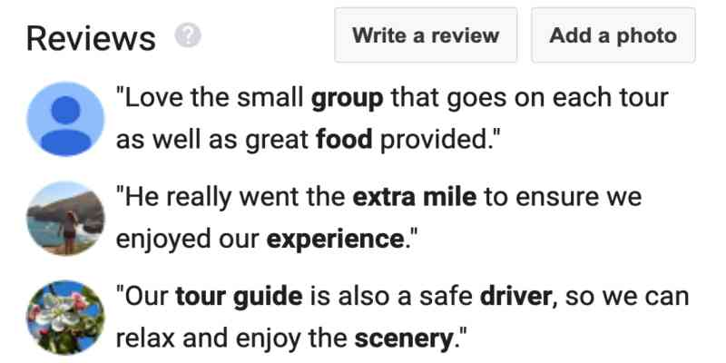 Google reviews for MaxTour