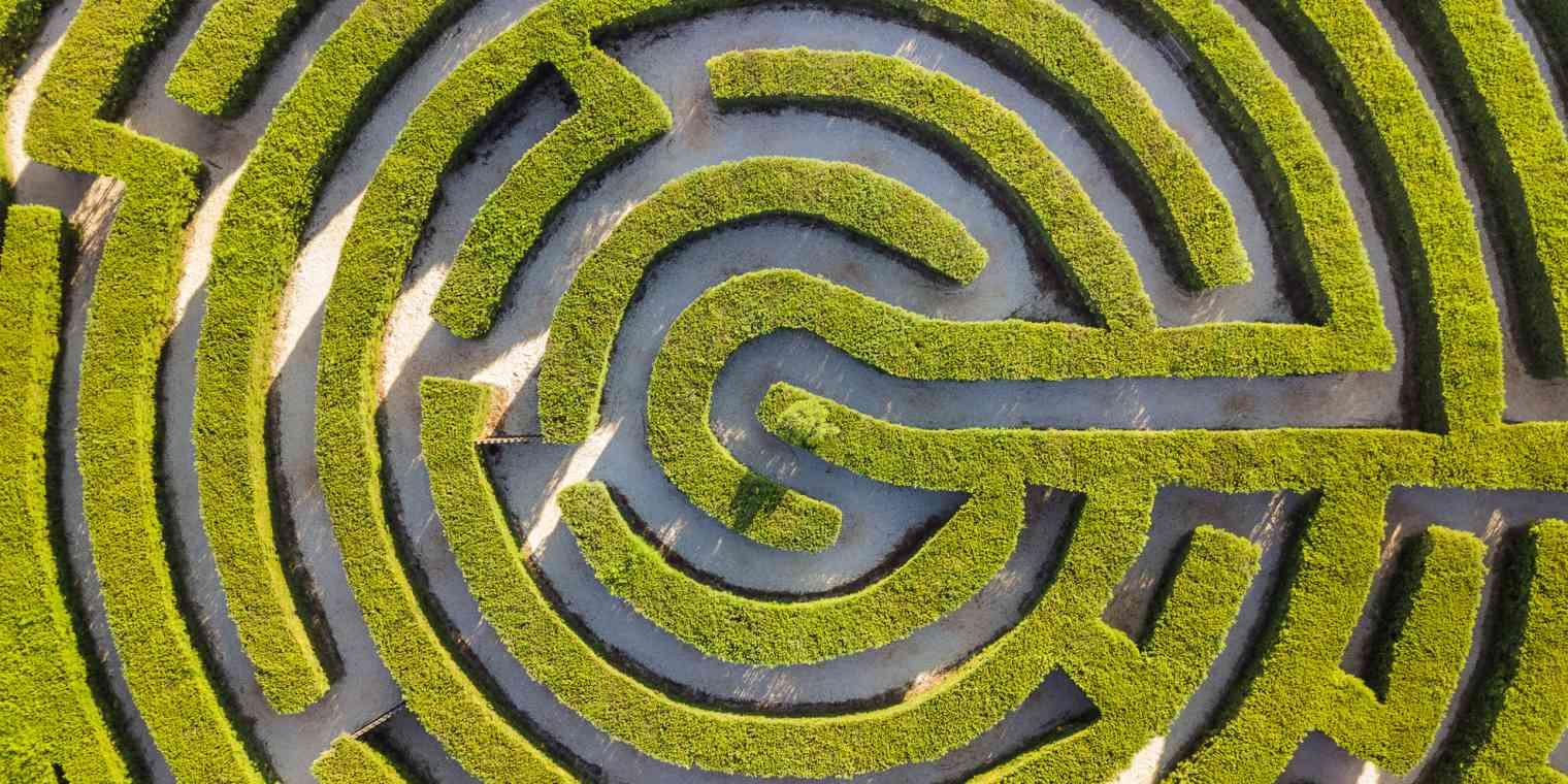 a botanical maze