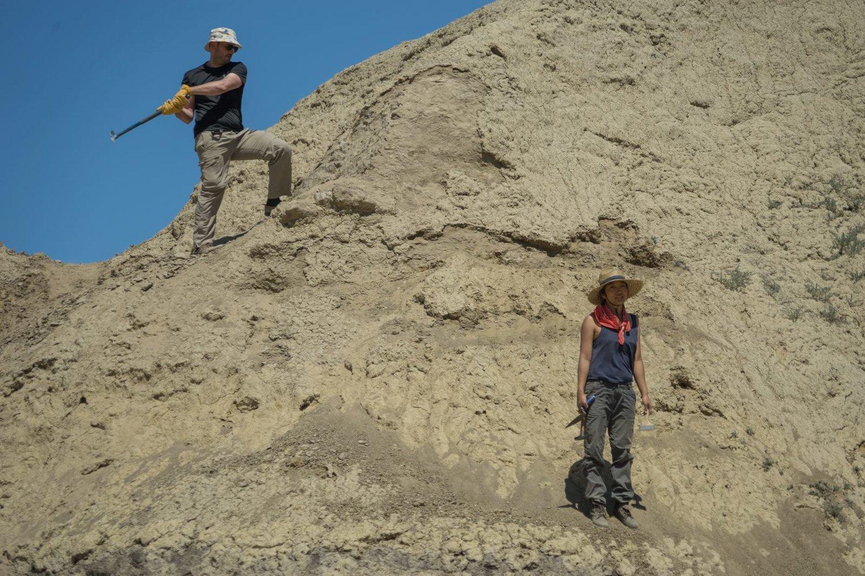 Mud hill