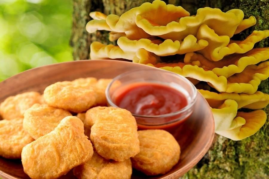 Nuggetsy z żółciaka