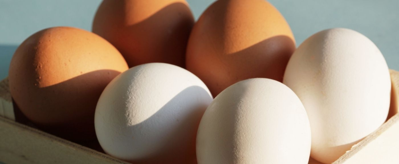 Jajka i kwestia skorupki