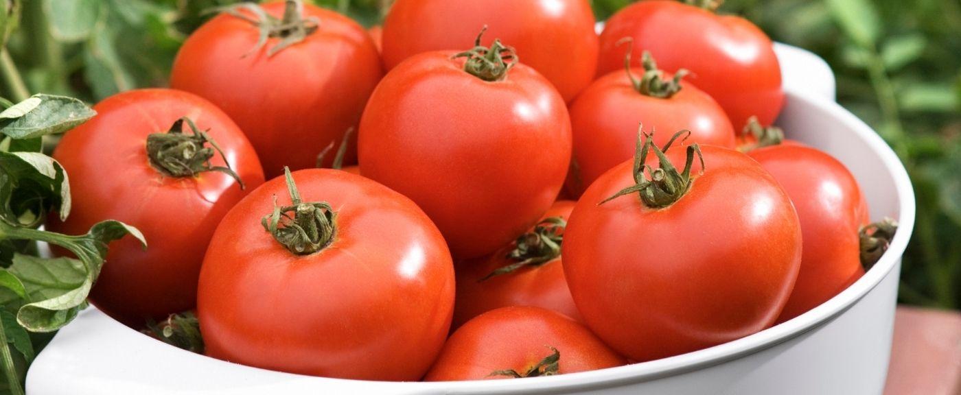 Pomidory i kwestia śniadania