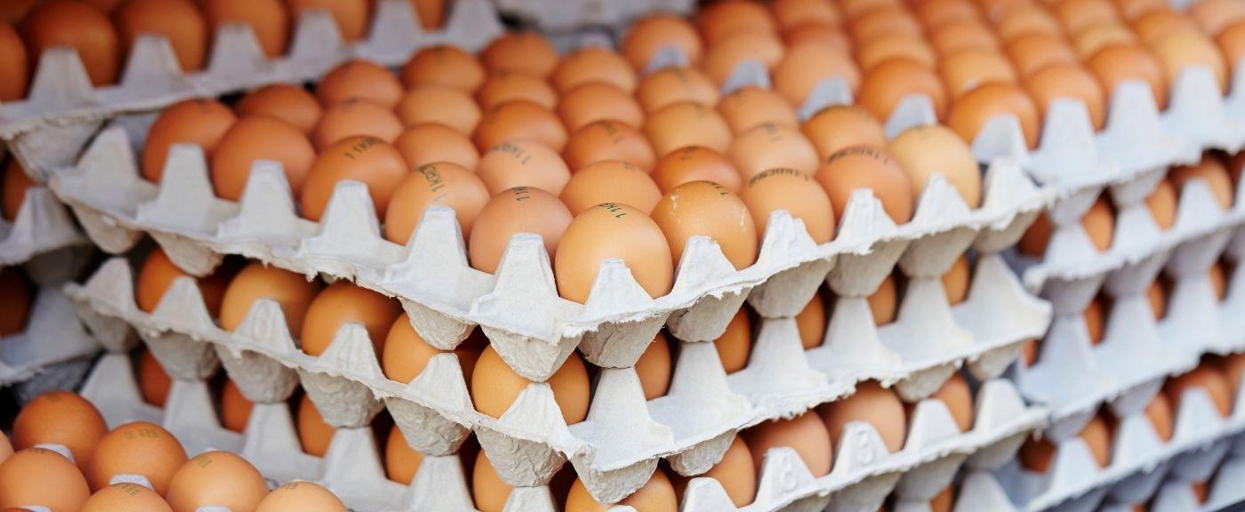 Jajka z chowu klatkowego znikają ze sklepów