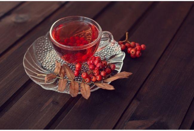 Herbata z jarzębiny