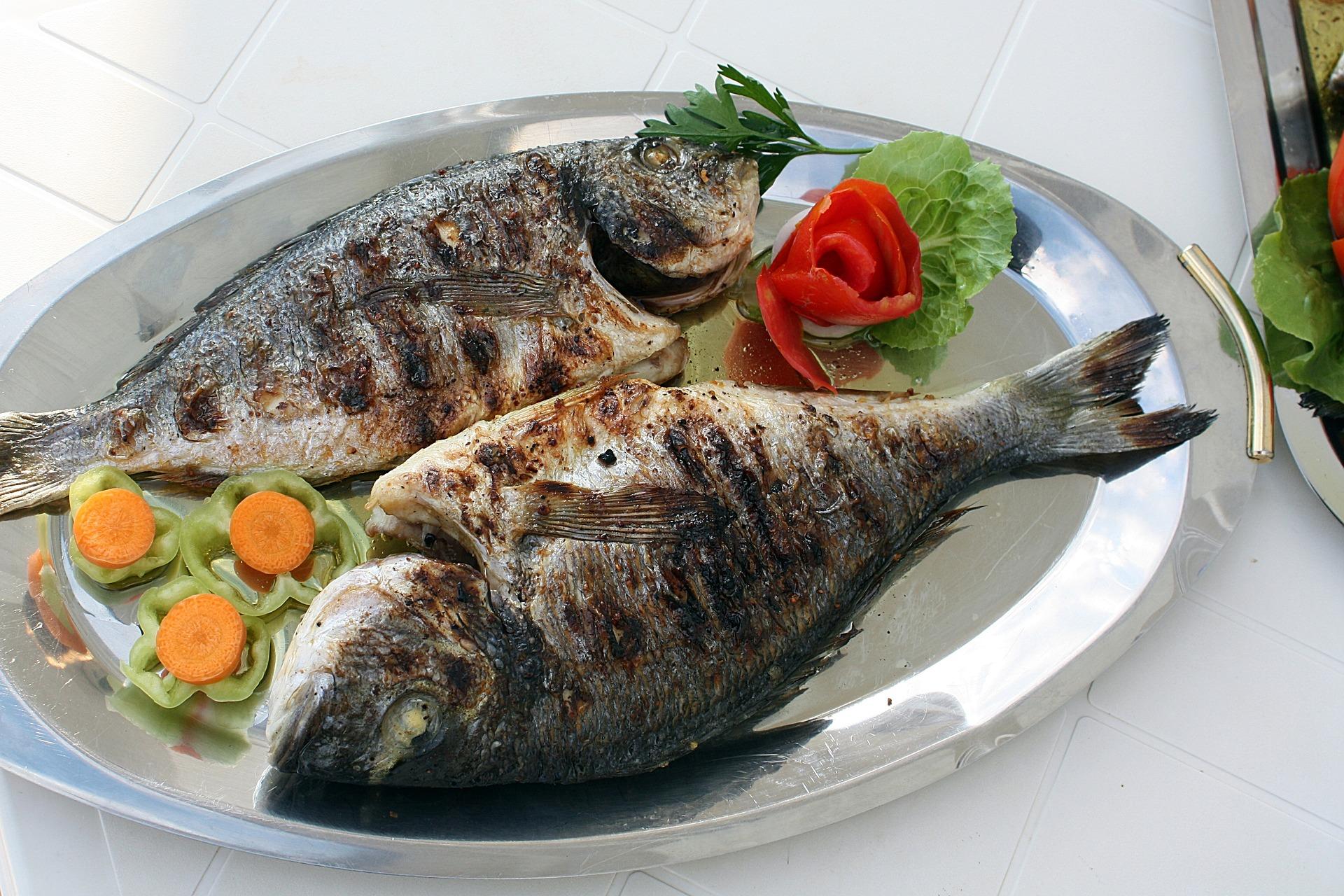 Ryby i ich wpływ na zdrowie