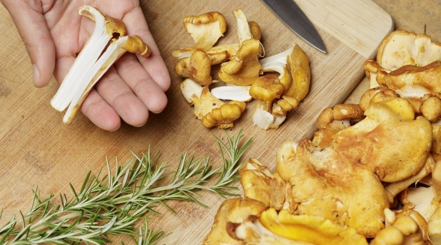 Co zrobić, by kurki nie straciły smaku?