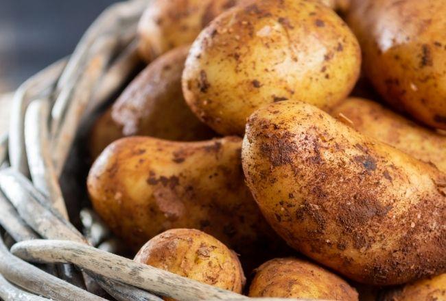 młode-ziemniaki