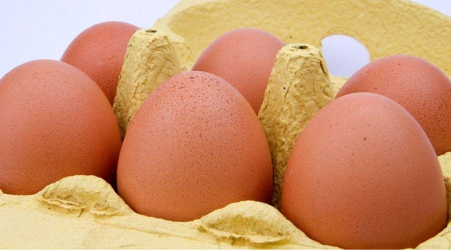 Jajka z okropnym znaleziskiem