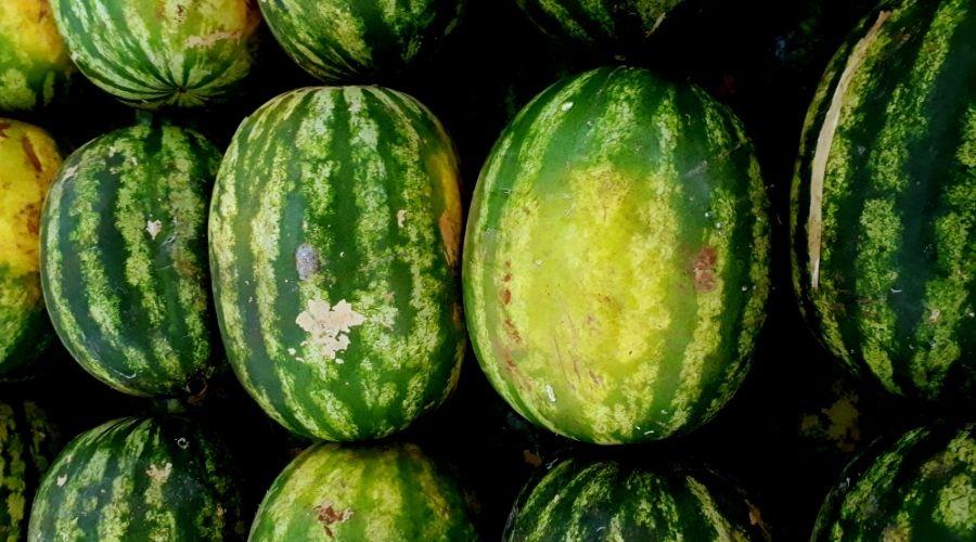Arbuz arbuzowi nierówny
