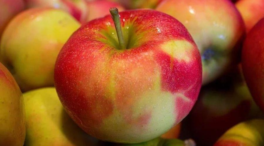 Sok jabłkowy ma wiele zalet