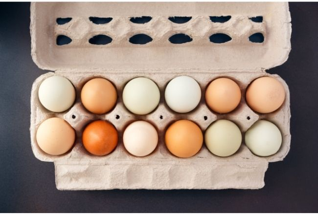 Jajka mogą mieć różne kolory