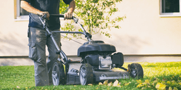 Why you want to Mow the Lawn to correct height