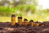 Sustainable and growing investments