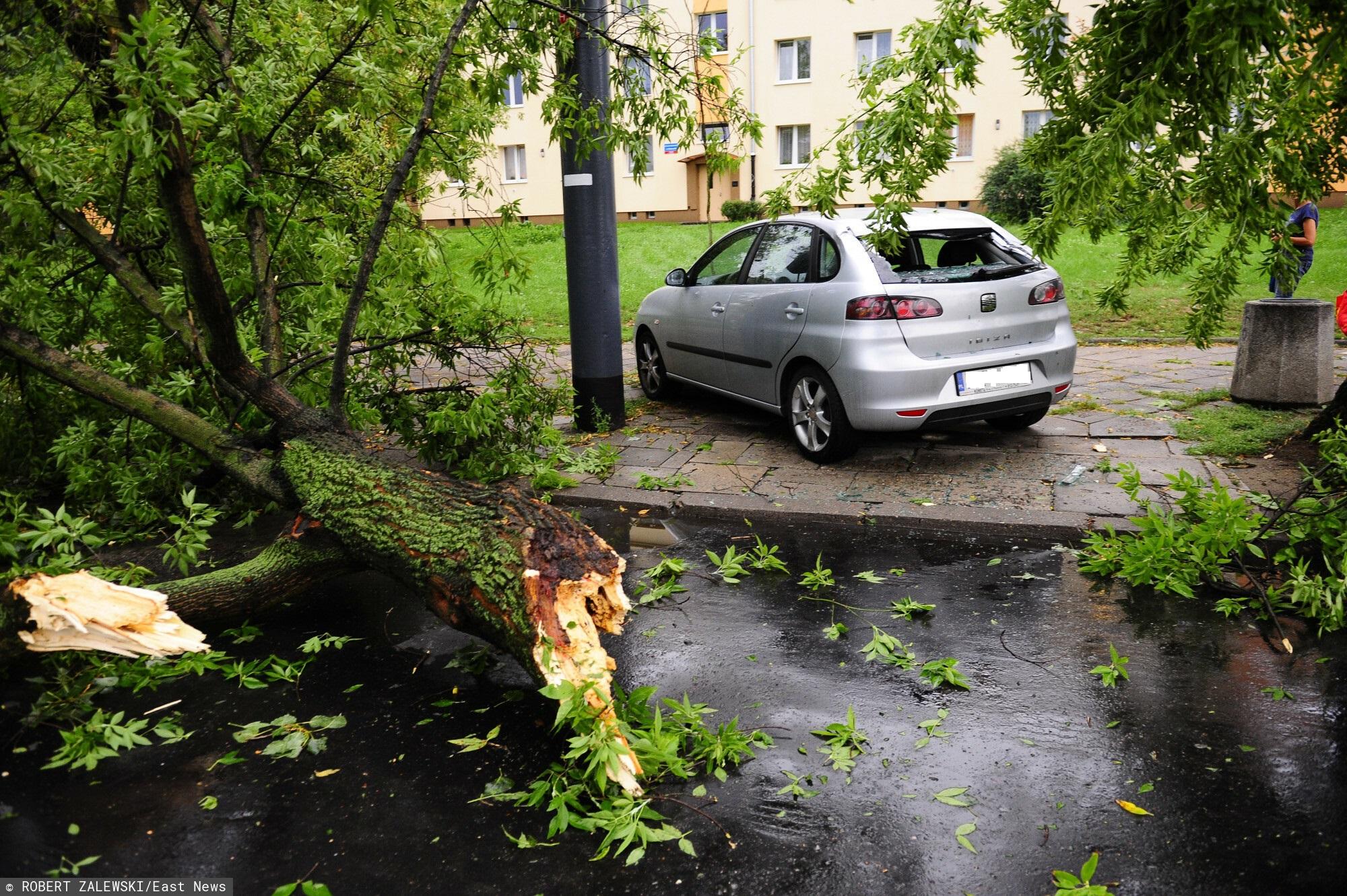 Burza w Gorzowie Wielkopolskim
