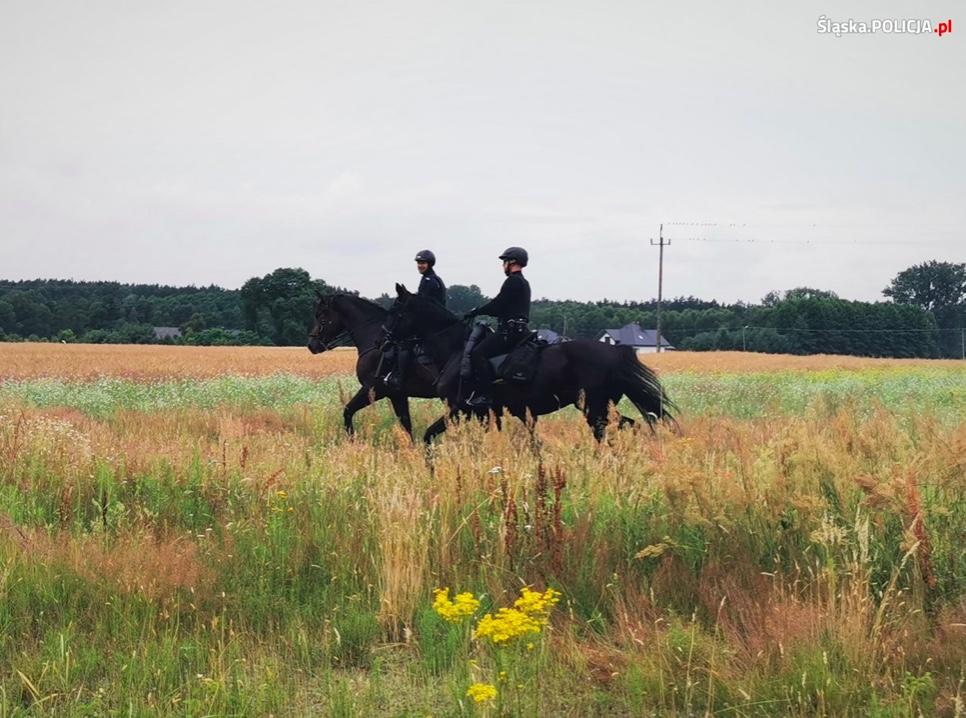 Patrole konne przeczesują teren w poszukiwaniu Jacka Jaworka