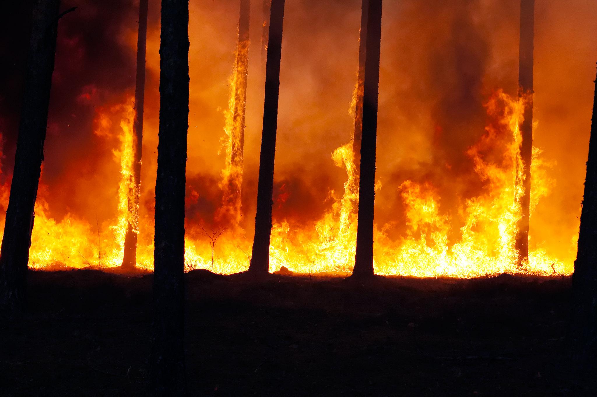 Pożary