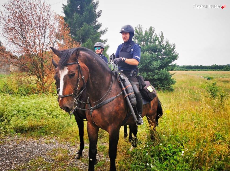 W działaniach biorą udział również patrole konne policji