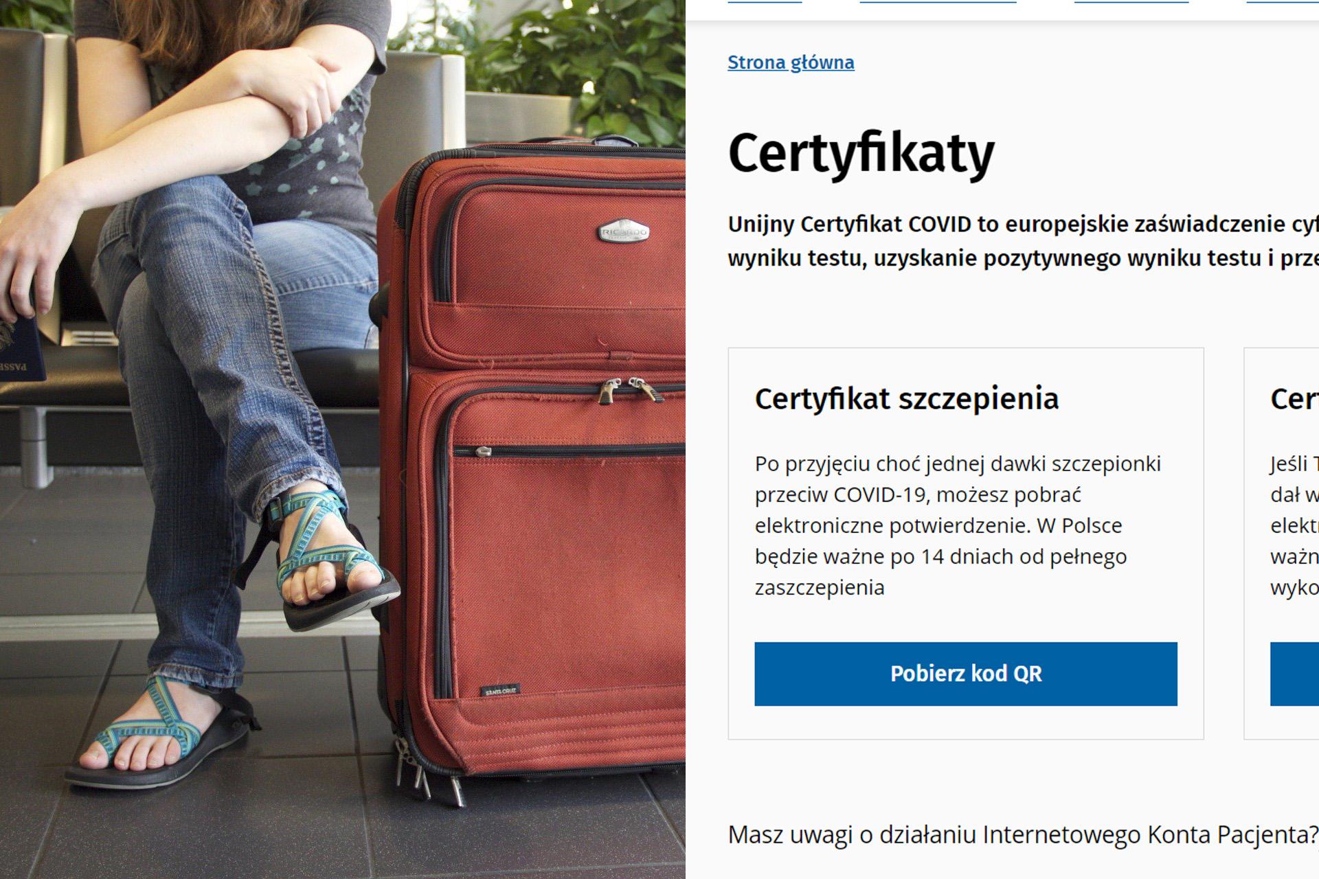 Pixabay/katyveldhorst & (screen) gov.pl